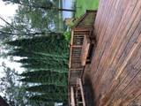 3018 Phelps Lake Rd - Photo 21
