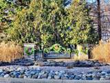 0 Oak Forest Drive - Photo 2