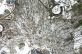 30958 Woodcrest - Photo 4
