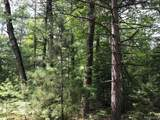 0 Racoon Trail - Photo 1