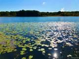 4921 Ackerson Lake Rd - Photo 3