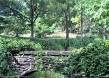 8170 Towering Pines Dr - Photo 4