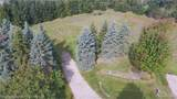 8170 Towering Pines Dr - Photo 5
