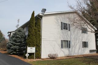 682 W Middle Street #8, Chelsea, MI 48118 (MLS #3247313) :: The Toth Team
