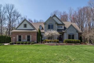 9578 Sherwood Drive, Saline, MI 48176 (MLS #3248049) :: Berkshire Hathaway HomeServices Snyder & Company, Realtors®