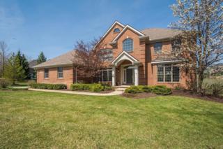 3996 Preserve Drive, Dexter, MI 48130 (MLS #3248064) :: Berkshire Hathaway HomeServices Snyder & Company, Realtors®