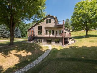 670 Island Lake Point, Chelsea, MI 48118 (MLS #3248091) :: Berkshire Hathaway HomeServices Snyder & Company, Realtors®