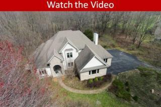 9928 Huron Creek Drive, Dexter, MI 48130 (MLS #3248097) :: Berkshire Hathaway HomeServices Snyder & Company, Realtors®