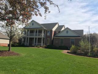 1795 Brookview Drive, Saline, MI 48176 (MLS #3248108) :: Berkshire Hathaway HomeServices Snyder & Company, Realtors®