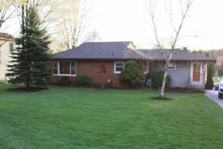 9575 Huron River Drive, Dexter, MI 48130 (MLS #3248188) :: Berkshire Hathaway HomeServices Snyder & Company, Realtors®