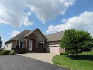 11649 Island Lake, Dexter, MI 48130 (MLS #3248972) :: The Toth Team