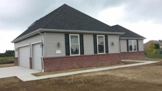 10544 River Edge Trail, Saline, MI 48176 (MLS #3249027) :: Berkshire Hathaway HomeServices Snyder & Company, Realtors®