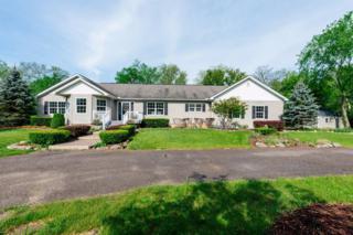 3757 Oakridge Court, Ann Arbor, MI 48105 (MLS #3249088) :: Berkshire Hathaway HomeServices Snyder & Company, Realtors®