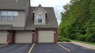 951 Addington, Ann Arbor, MI 48108 (MLS #3249212) :: The Toth Team