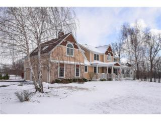 5200 N Dixboro Road, Ann Arbor, MI 48105 (MLS #R217020115) :: Berkshire Hathaway HomeServices Snyder & Company, Realtors®