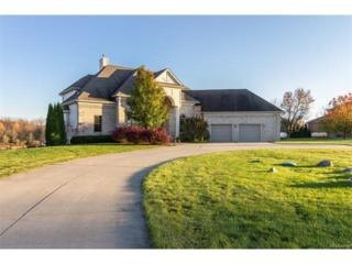 6843 Daly Road, Dexter, MI 48130 (MLS #R217021623) :: Berkshire Hathaway HomeServices Snyder & Company, Realtors®