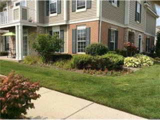 1131 Alameda Boulevard, Troy, MI 48085 (MLS #R217021936) :: Berkshire Hathaway HomeServices Snyder & Company, Realtors®