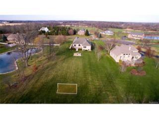 8376 Reese Lane, Ann Arbor, MI 48103 (MLS #R217023181) :: The Toth Team