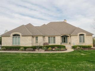 3932 Lake Vista, Dexter, MI 48130 (MLS #R217030877) :: Berkshire Hathaway HomeServices Snyder & Company, Realtors®