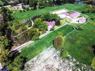 11400 N Territorial Road, Dexter, MI 48130 (MLS #R217039101) :: Berkshire Hathaway HomeServices Snyder & Company, Realtors®