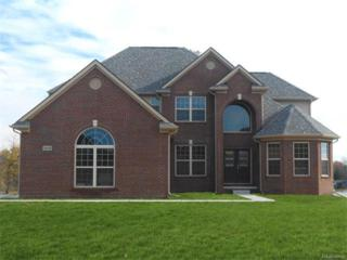 353 Valley View Drive, Oxford, MI 48371 (MLS #R217041206) :: The Toth Team