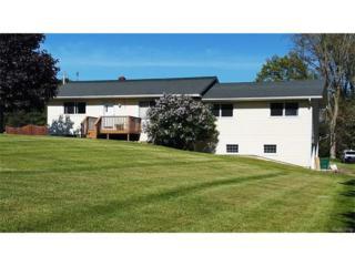 8405 Werkner Road, Chelsea, MI 48118 (MLS #R217042400) :: Berkshire Hathaway HomeServices Snyder & Company, Realtors®