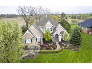6711 Brook Trout, Plymouth, MI 48170 (MLS #R217043049) :: The Toth Team