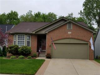 344 Lake Forest Drive, Waterford, MI 48327 (MLS #R217044121) :: The Toth Team