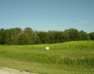 8702 Black Pine Parcel 12, Whitmore Lake, MI 48189 (MLS #3220337) :: The Toth Team