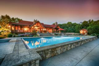 13635 Pheasant Ridge Court, Chelsea, MI 48118 (MLS #3241586) :: Berkshire Hathaway HomeServices Snyder & Company, Realtors®