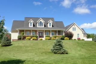 7365 Scully Road, Dexter, MI 48130 (MLS #3246935) :: Berkshire Hathaway HomeServices Snyder & Company, Realtors®