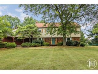 3660 Meadow Lane, Saline, MI 48176 (MLS #R217041364) :: Berkshire Hathaway HomeServices Snyder & Company, Realtors®