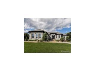 9320 Stoneview Lane, Whitmore Lake, MI 48189 (MLS #R217043297) :: The Toth Team