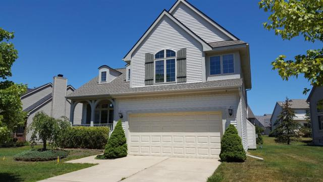 6040 Gabrielle Avenue, Ann Arbor, MI 48103 (MLS #3250803) :: The Toth Team