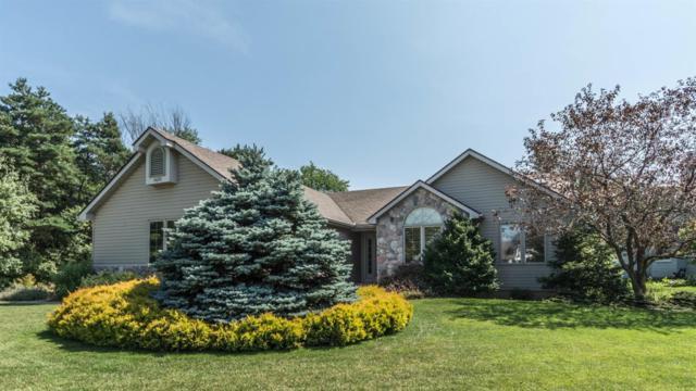 1455 Wedgewood Drive, Saline, MI 48176 (MLS #3250842) :: Berkshire Hathaway HomeServices Snyder & Company, Realtors®