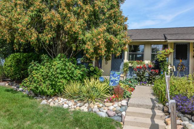 2389 Jeanne Street, Ann Arbor, MI 48104 (MLS #3251322) :: The Toth Team