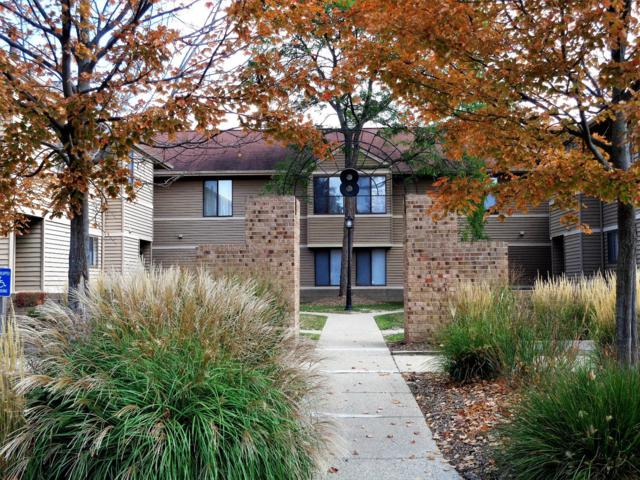225 Briarcrest Drive #199, Ann Arbor, MI 48104 (MLS #3252122) :: The Toth Team