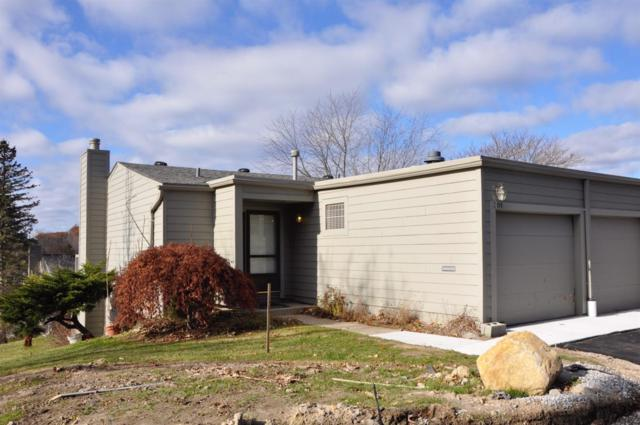 701 Skynob Drive, Ann Arbor, MI 48105 (MLS #3253406) :: The Toth Team
