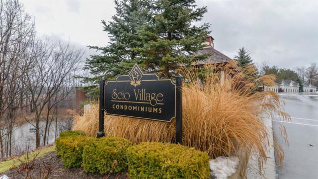 229 Scio Village #218, Ann Arbor, MI 48103 (MLS #3254050) :: The Toth Team