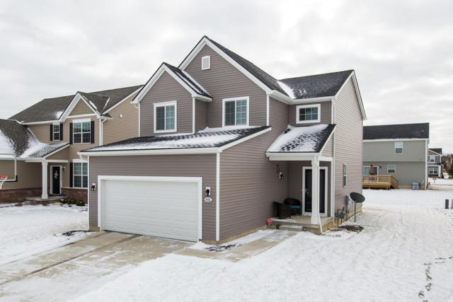 446 Elm Street, Chelsea, MI 48118 (MLS #3254187) :: Berkshire Hathaway HomeServices Snyder & Company, Realtors®