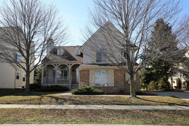 5603 Versailles Avenue, Ann Arbor, MI 48103 (MLS #3254657) :: The Toth Team