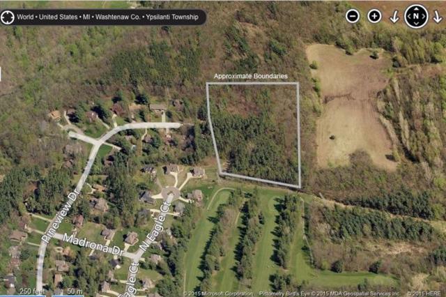 5399 Pineview Drive, Ypsilanti, MI 48197 (MLS #3255432) :: The Toth Team