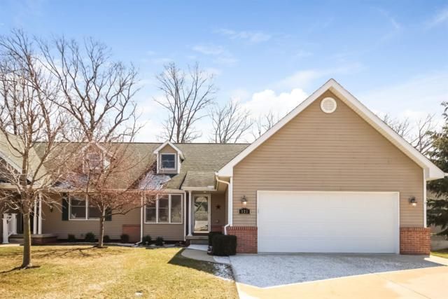325 Woodhaven Place, Manchester, MI 48158 (MLS #3255707) :: The Toth Team