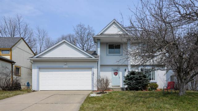 1485 Northbrook Drive, Ann Arbor, MI 48103 (MLS #3255816) :: The Toth Team