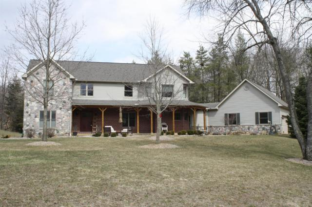 10529 Rolling Oaks, Manchester, MI 48158 (MLS #3255830) :: The Toth Team