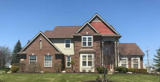 1878 Orchardview, Ann Arbor, MI 48108 (MLS #3256389) :: The Toth Team