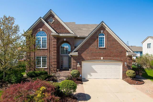 43648 Cedarhurst Drive, Belleville, MI 48111 (MLS #3256683) :: Berkshire Hathaway HomeServices Snyder & Company, Realtors®