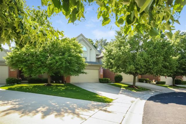 208 Eisenhower Drive, Chelsea, MI 48118 (MLS #3257738) :: Berkshire Hathaway HomeServices Snyder & Company, Realtors®