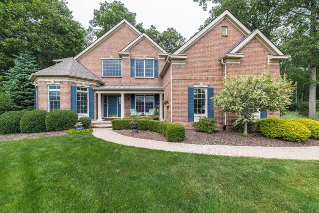 7560 Secretariat Drive, Saline, MI 48176 (MLS #3257922) :: Berkshire Hathaway HomeServices Snyder & Company, Realtors®