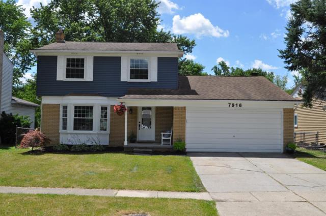 7916 Raintree Drive, Ypsilanti, MI 48197 (MLS #3258691) :: The Toth Team